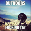 outdoors-****ing-yay-dog-meme.jpg