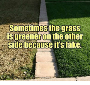 sometimes-the-grass-is-greener-on-the-other-side-because-2971247.png