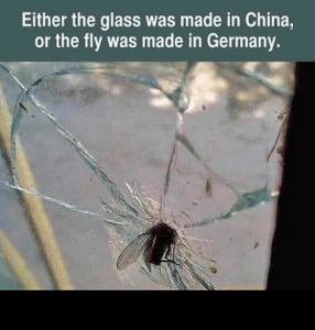 thumb_either-the-glass-was-made-in-china-or-the-fly-65896230.png