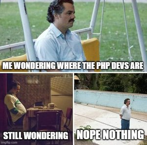PHP Dev wondering.jpg