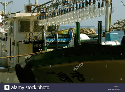 squid-fishing-boat-equipped-with-powerful-lights-dodong-ri-harbor-ADR54A.jpg