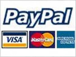 PayPal gets new rival in offline payments race
