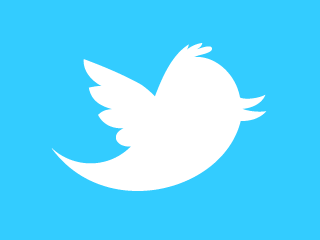 Twitter bird feature header