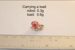 Origami Robot size, weight, load
