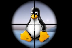 Linux penguin in the sights