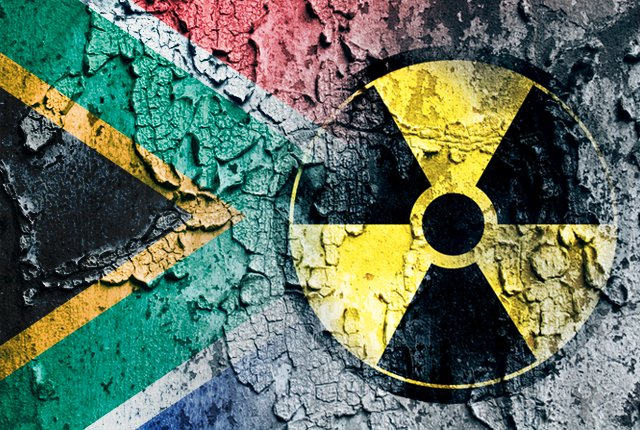 South Africa has to go nuclear: Minister