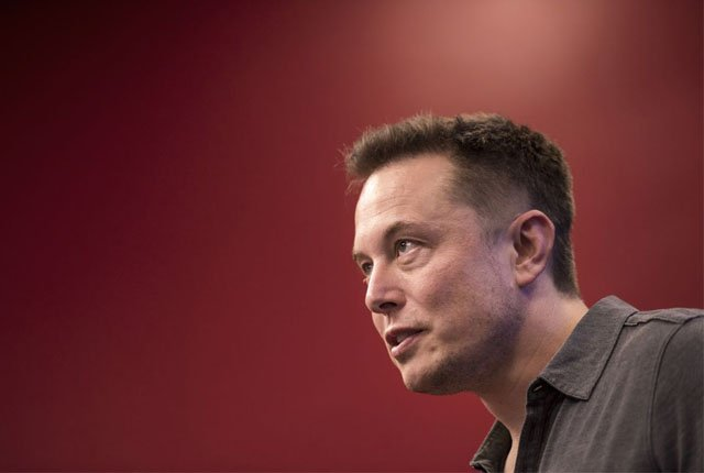 Elon Musk donates $1 million to plant trees