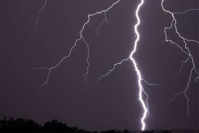 Do not stand under a tree during lightning – And other truths