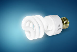 Energy Saver fluorescent light bulbs