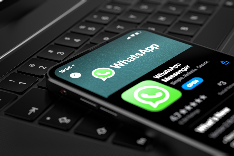 WhatsApp testing in-app business directory